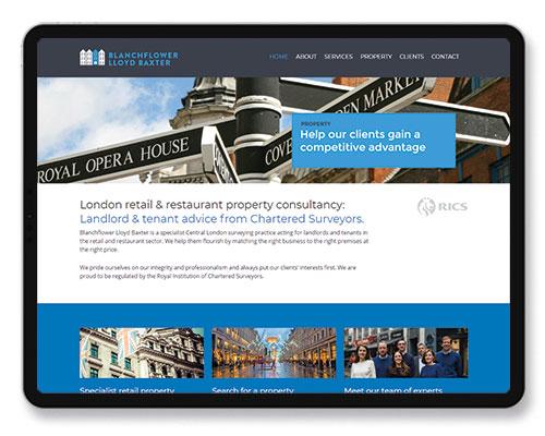 Blanchflower Lloyd Baxter website copy