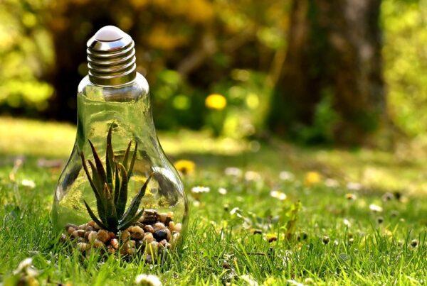 environmental copywriting